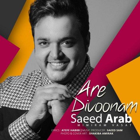 سعید عرب – آره دیوونم
