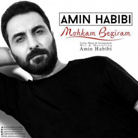 Amin Habibi – Mohkam Begiram